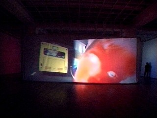 Pipilotti Rist «Remake of the Weekend»
