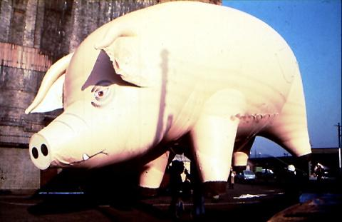 Jeffrey Shaw «Pig for Pink Floyd»