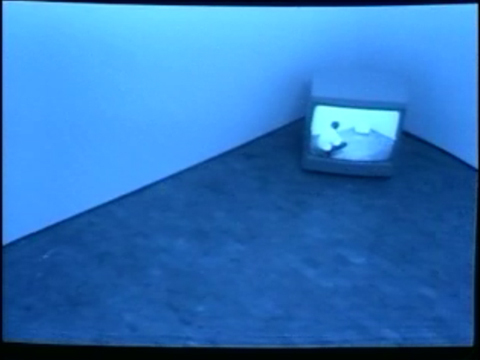 Bruce Nauman «Video Surveillance Piece»